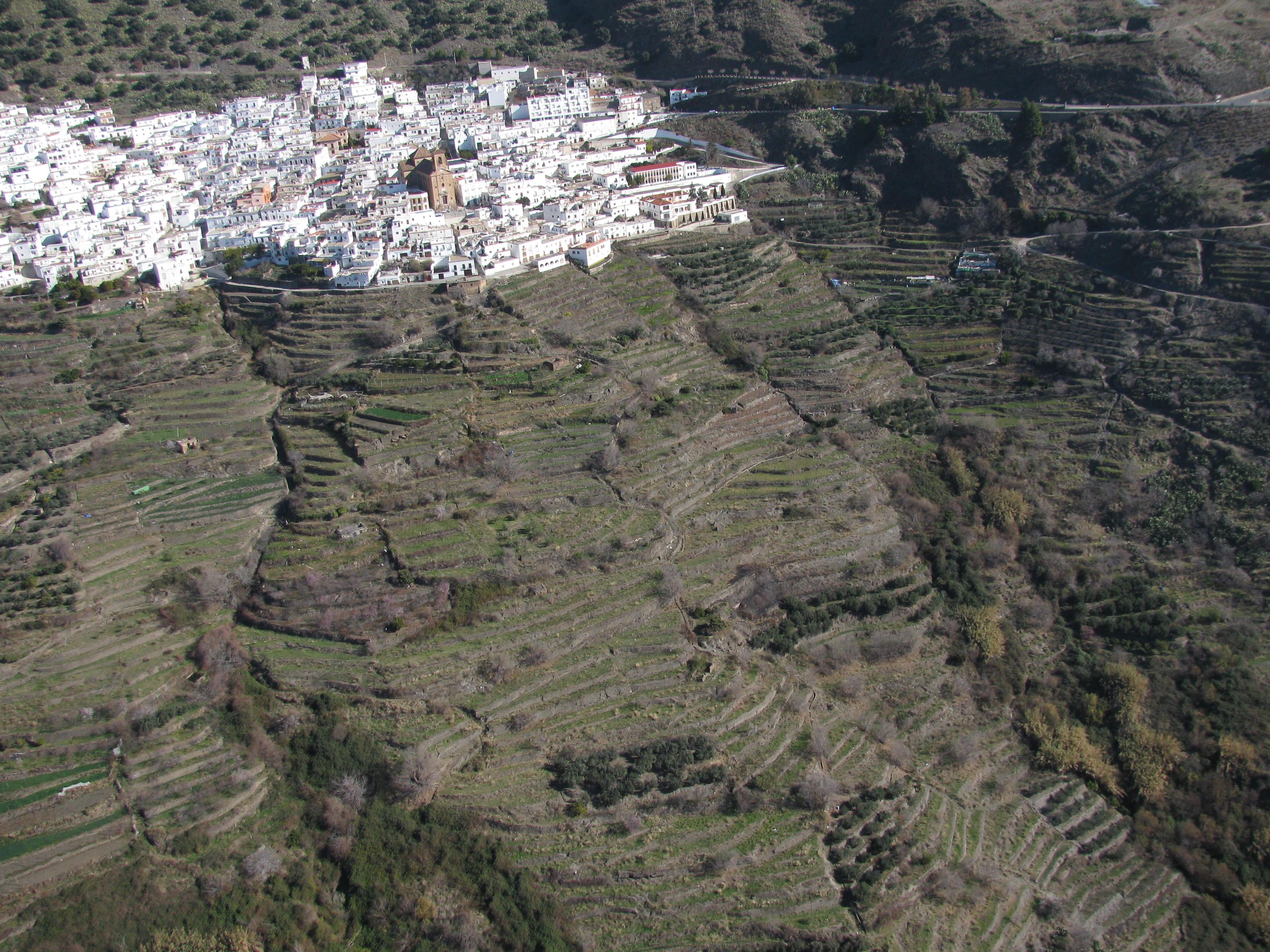 Cultivos En Terrazas En Ohanes Sierra Nevada Almería